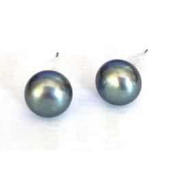 Earrings - Real Pearls 8mm - 925 Sterling Silver - Black  Blue + BOX
